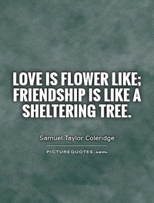 Friendship Quotes About Trees
