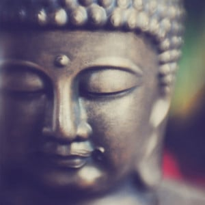 ... zen and tibetan buddhism quotes on enlightenment 16 beautiful quotes