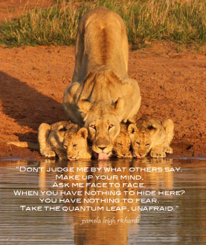 Lioness with cups at water hole Pamela quote