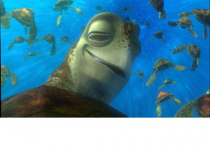 Dude's so stoned he can't even keep his eyes open. Turtles, eh?