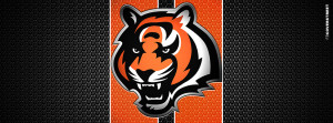 Cincinnati Bengals Tiger Logo Cincinnati Bengals Modern Logo