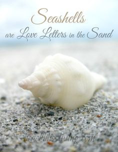 Seashells are Love Letters in the Sand: http://beachblissliving.com ...