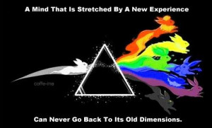 Love this take on the classic Prism image that Pink Floyd made famous.