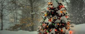 2560x1024 Wallpaper tree, garland, new year, christmas, trees, snow ...