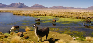 distinctive famous landmarks in chile attractions in chile famous ...