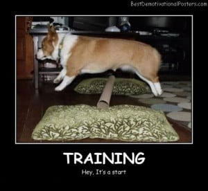 Training Demotivational Poster