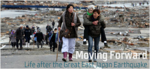 the Great East Japan Earthquake Learning from the Great East Japan ...