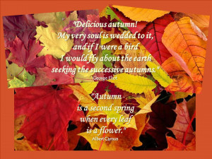 Welcome, Autumn!