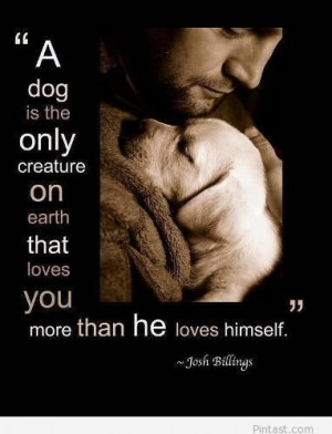 Awesome quotes about dogs