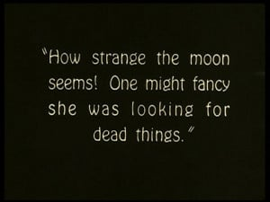 dead, quote, strange, the moon, typography