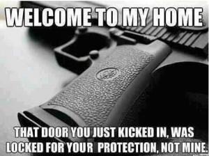 Anti-Gun Ban Funny Cartoons