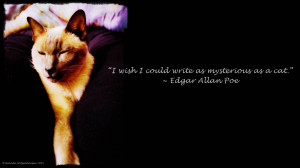 Edgar Allan Poe Quotes 11, A picture with an Edgar Allan Poe quote ...