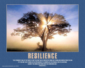RESILIENCE - Napoleon Hill
