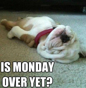 Is Monday over yet