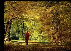 Nirvana Buddhism Quotes Buddha