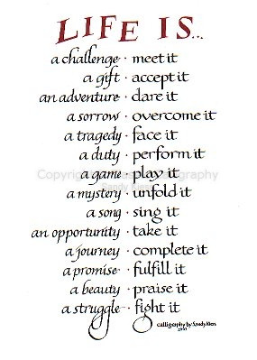 Image of calligraphy P8-56 Life is a Challenge, a Gift, an Adventure