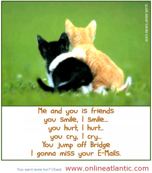 ... quotes about friend, funny quotes, funny friends quotes, friend quotes
