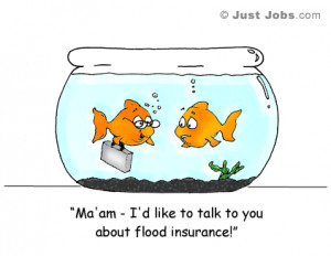 goldfish-cartoon - I'd like to talk to you about flood insurance!