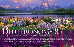 ... Verses Deuteronomy 8:7 Beautiful Flowers River Mountains HD Wallpaper