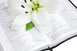 Bible And Lily Flowers Quoteko