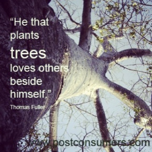 """He that plants trees loves others beside himself."""" Thomas Fuller"""