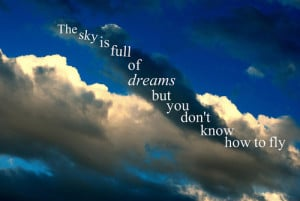 The sky is full of dreams, but you don't know how to fly.