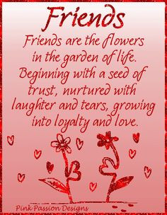 ... garden of life... friendship flowers roses friend special friend quote
