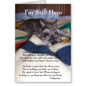 ... you find the right words to express your sorrow for the loss of a pet