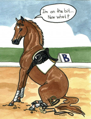 Funny Horse Pictures Gallery