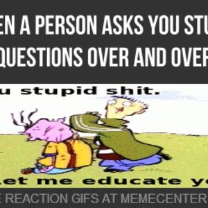 Dealing With Stupid People Meme