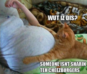 Cheezburger Cat Has To Open Up This Belly Because He Will Haz ...
