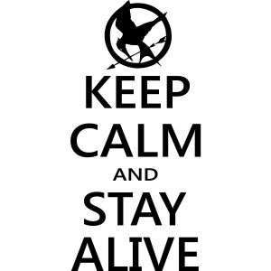 The Hunger Games Mocking Jay wall decal wall art wall quotes wall ...