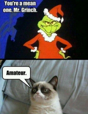 cat funny, grumpy cat humor, grouchy cat …For more funny quotes ...
