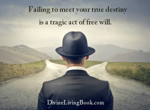 ... quotes #inspirational #freewill #destiny #choices #fulfillment #fate #
