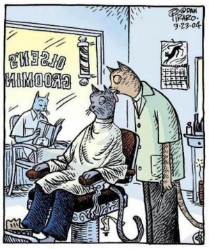 Very Funny Cat Barber Grooming Licking Cartoon Joke Picture