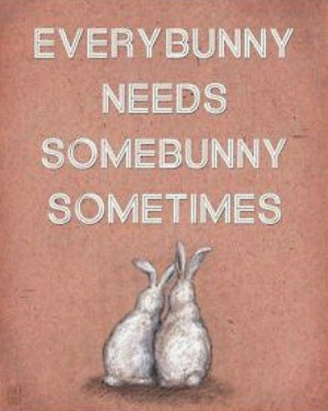 Every bunny needs some bunny sometimes.
