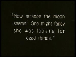dead, quote, strange, the moon, typography