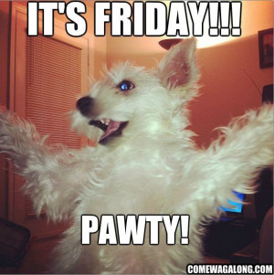 187559-Its-Friday-Pawty-.jpg