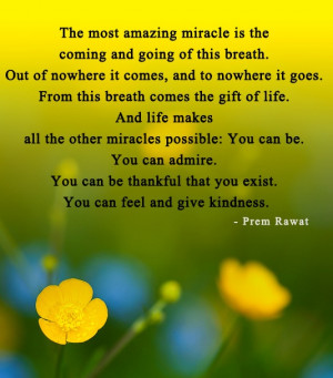 The Most Amazing Miracle