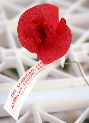 We talked about Veterans and I told them the story of the Poppy.