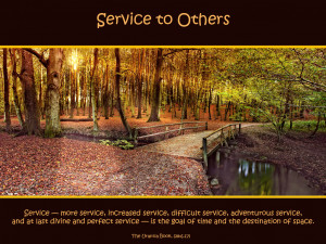 Service To Others Quotes Service to others