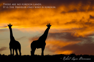 ... Cape Game Reserve, South Africa // Quote: Robert Louis Stevenson