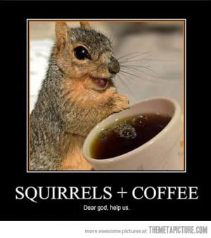 funny coffee a funny coffee quotes