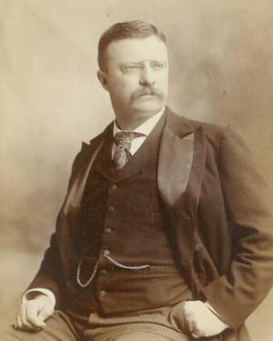 Theodore-Roosevelt-Bram-Stoker-Estate