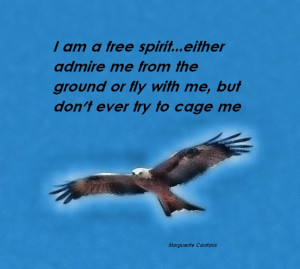 ... Me From The Ground Or Fly With Me Quote And The Picture Of The Eagle