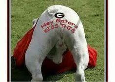 ... girls things georgia funny georgia dawgs gator kisses georgia bulldogs