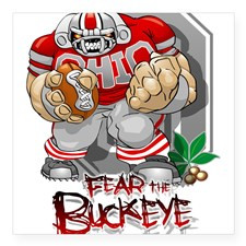 buckeye football Sticker for