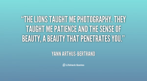 The lions taught me photography. They taught me patience and the sense ...