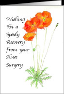 Orange Poppies Recovery from Knee Surgery Card - Product #645286
