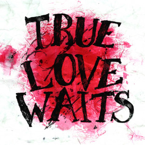 ... the love story true love waits image true love waits quotes bible
